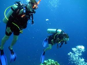 5 THINGS TO DO IN CURACAO #Travel #Caribbean