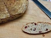 Grain Cranberry Almond Sourdough Bread!