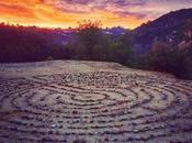 Chakras: Guides Path Healing