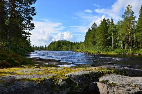 outdoors-landscape-river-taiga
