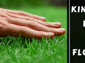 Find Right Kind Grass Your Central Florida Yard