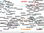 Mapping Subjective Feelings.