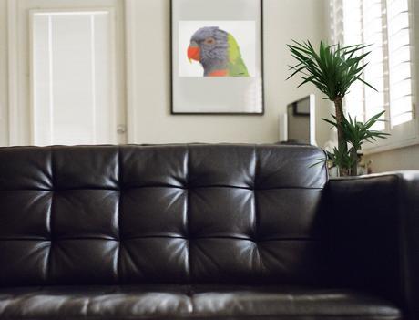 Tropical Interiors: Parrot Living Room