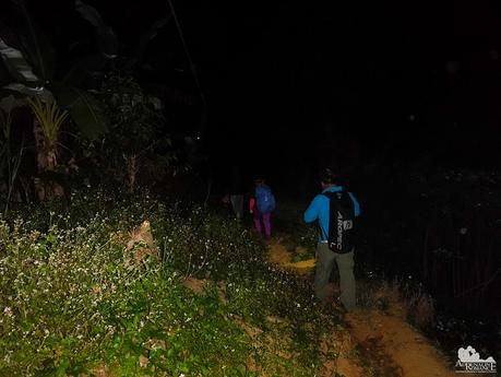 Going back to base camp