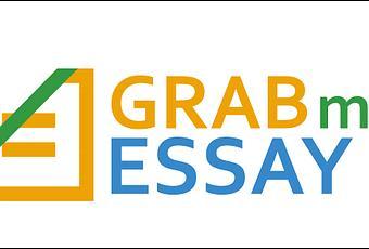 Online essay writing websites