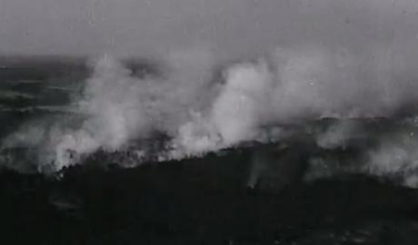 The great Landes forest fire of 1949