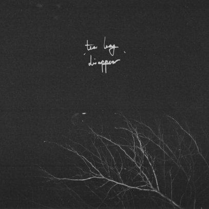 Tea Leaf – 'Disappear' EP track-by-track