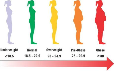 bmi calculator india obesity scale