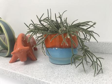 Perfect Pots