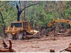 South Australia's Broken Biodiversity Legislation