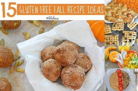15 Gluten Free Fall Recipes Ideas