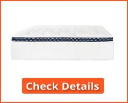The Best Mattress for Back Sleepers Reviews 2018
