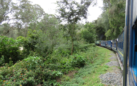 Photo essay: Nilgiri mountain railway: toy train from Ooty to Coonor