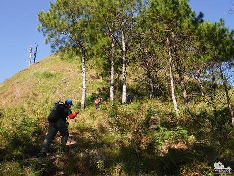 Trekking on open terrain