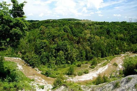 Discover the Beauty of Toronto on These Top 4 Hikes
