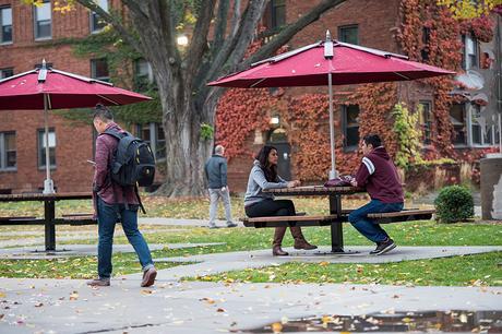 creative writing undergraduate programs