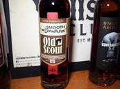 Scout Single Barrel Smooth Dramblers Review