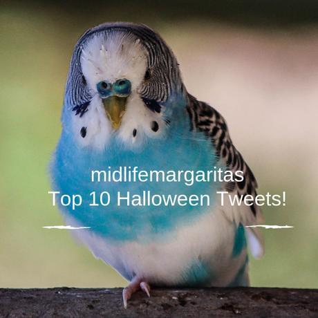 10 Funny Halloween Tweets for 2018