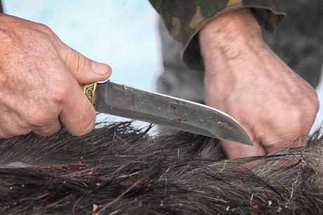Hunting Knife FAQs