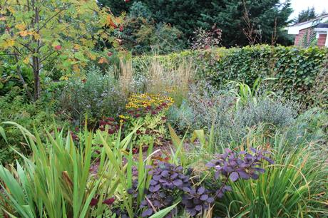Early Autumn in the Front Garden