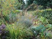 Early Autumn Front Garden