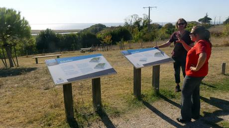 Seeing the Gironde estuary through the eyes of tour guide Marie Hallier