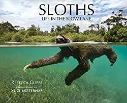 Image: Sloths: Life in the Slow Lane, by Dr. Rebecca Cliffe (Author), Suzi Eszterhas (Photographer). Publisher: The Sloth Conservation Foundation (2017)