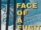 Face Fugitive