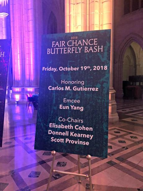 What I Wore: Fair Chance Butterfly Bash