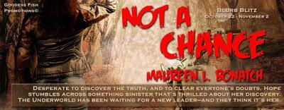 Not a Chance by Maureen L. Bonatch