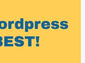 WordPress Best Platform Types Business Owners?