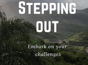 Stepping Challenge Gratitude's Celebrations Journal