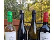 Abruzzo's Codice Citra Ferzo Wines