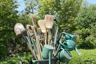 Keep your Garden Blooming all year round with these Budget-friendly tips