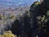 Teetering Edge Cliff