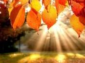 Illumination: Self Love, Respect, Enlightenment