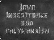 Java Inheritance Polymorphism