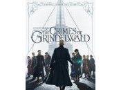 Fantastic Beasts: Crimes Grindelwald (2018) Review