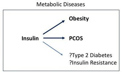 PCOS, anovulatory cycles and hyperinsulinemia – PCOS 9