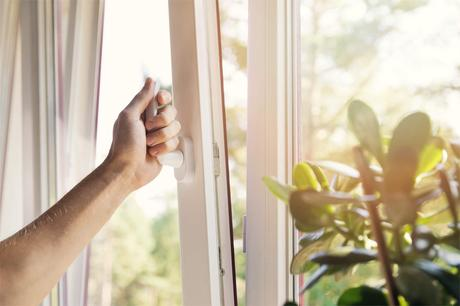 5 Tips to Save Your Home from Mold Growth