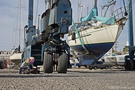 Two girls petting a dog in front of a marine travellift with a sailboat in the slings.