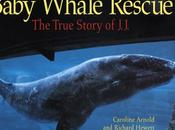 BABY WHALE RESCUE: True Story J.J., Available E-Book