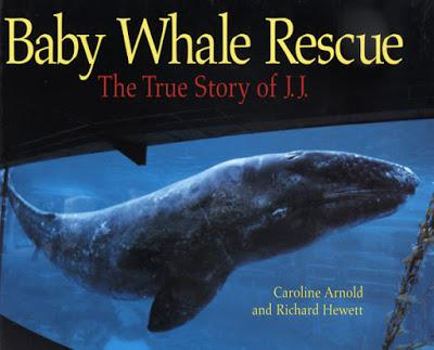 BABY WHALE RESCUE: The True Story of J.J., now available as an E-Book