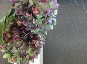 Sunday Bouquet: Dried Forgotten