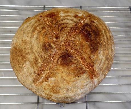 5 grain sourdough bread!