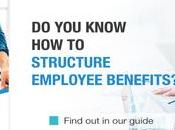 What Should Employees When Companies Healthcare Benefits?