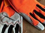 Product Review Donkey Gloves