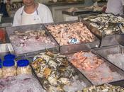 Panama City Fish Market: Mercado Mariscos