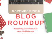 November 2018 Blog Roundup December Plans