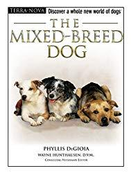 Image: The Mixed-Breed Dog (Terra-Nova), by Phyllis DeGioia (Author). Publisher: TFH Publications, Inc.; Har/DVD edition (May 1, 2007)